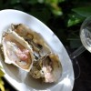 oyster tequila