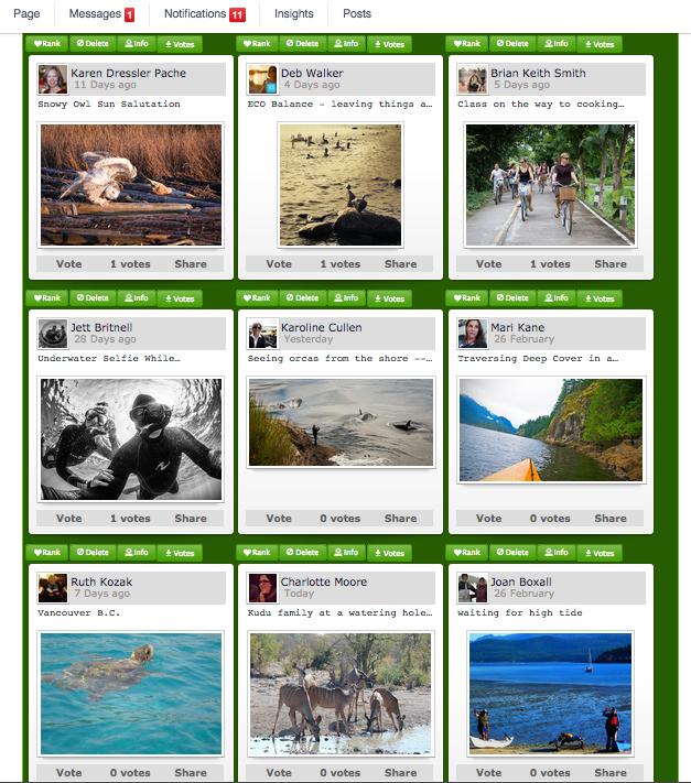 ecotourism photo contest