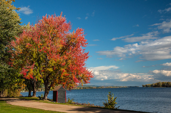 Fall on the Ottawa River