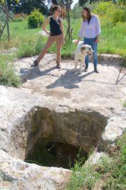 Ancient wine press Clos de Gat